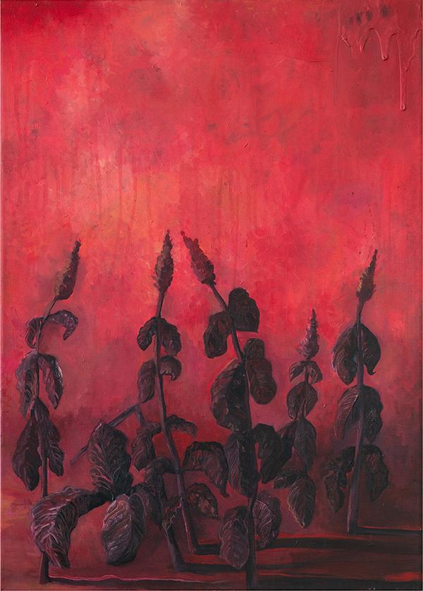 Flori de foc